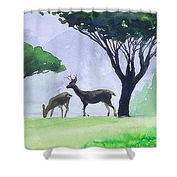 Shower Curtain featuring the painting Point Lobos by Ed Heaton