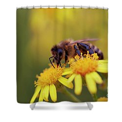 Pollination Shower Curtain by Michal Boubin