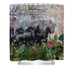 Ponies Shower Curtain