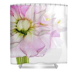 Pretty In Pink Shower Curtain by Rebecca Cozart