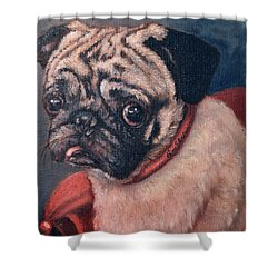 Pugsy Shower Curtain