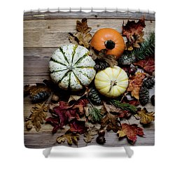 Shower Curtain featuring the photograph Pumpkins by Rebecca Cozart