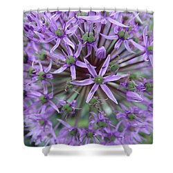 Shower Curtain featuring the photograph Purple Allium Burst by Rebecca Overton