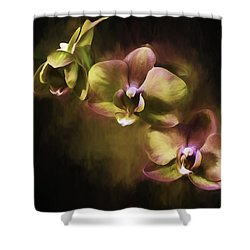 Shower Curtain featuring the digital art Purple And Gold by Ken Frischkorn