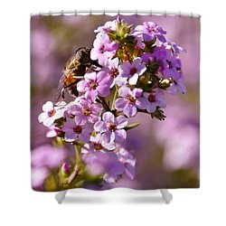 Purple Blossoms And Hoverfly Shower Curtain by Werner Lehmann