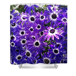 Shower Curtain featuring the photograph Purple Bunch by Haleh Mahbod