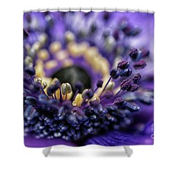 Purple Heart Of A Flower Shower Curtain