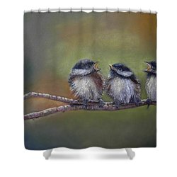 Quarelling Shower Curtain
