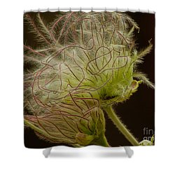 Quirky Red Squiggly Flower 3 Shower Curtain