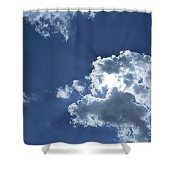 Shower Curtain featuring the photograph Radiance by Megan Dirsa-DuBois
