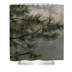 Rain Drops Shower Curtain by Inge Riis McDonald