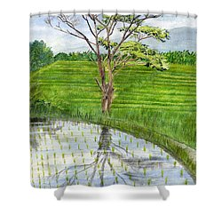 Shower Curtain featuring the painting Rain Tree On The Way To Ubud Bali Indonesia by Melly Terpening