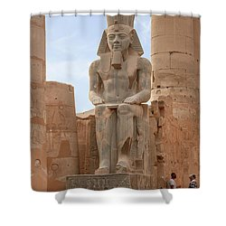 Shower Curtain featuring the photograph Rameses by Silvia Bruno