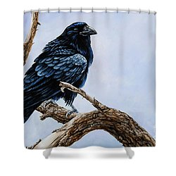 Shower Curtain featuring the painting Raven by Igor Postash