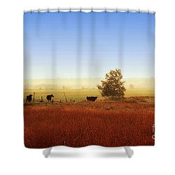 Rawdon Everyday Life Shower Curtain by Aimelle
