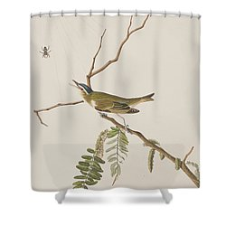 Red Eyed Vireo Shower Curtain by John James Audubon