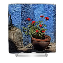 Shower Curtain featuring the photograph Red Geranium Near A Blue Wall by Patricia Hofmeester
