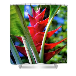 Red Heliconia Hawaii Shower Curtain