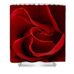 Red Rose Vi Shower Curtain