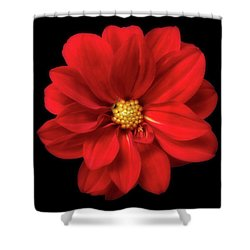 Red Summer Memory 2 Shower Curtain