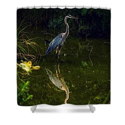 Shower Curtain featuring the photograph Reflect. by Kendall McKernon