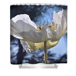 Reflection Yellow On White Shower Curtain by Debby Pueschel