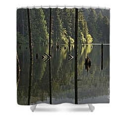 Shower Curtain featuring the photograph Reflections by Inge Riis McDonald