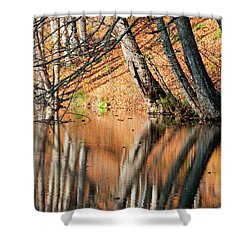 Shower Curtain featuring the photograph Reflections by Okan YILMAZ