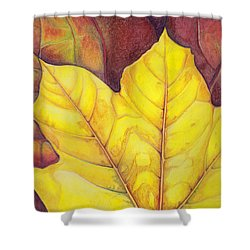 Releaf Shower Curtain by Amy Tyler