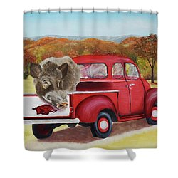 Ridin' With Razorbacks 2 Shower Curtain