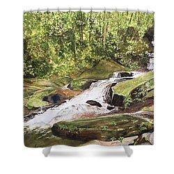 Roaring Fork Falls -- June 2017 Shower Curtain