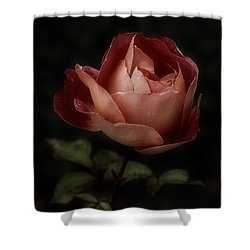 Romantic November Rose Shower Curtain
