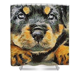 Rottweiler Puppy Portrait Shower Curtain by Tracey Harrington-Simpson