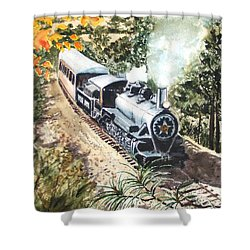 Shower Curtain featuring the painting Round The Bend by Karen Ilari