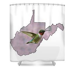 Ruby-throated Hummingbird  Beautiful Coloring Shower Curtain