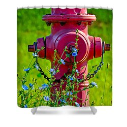 Rustic Red 2 Shower Curtain