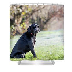 Ryder A Shower Curtain
