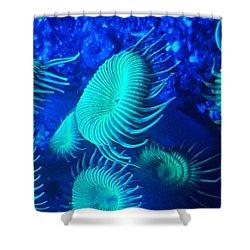 Saltwater  Shower Curtain