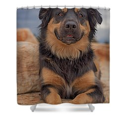 Shower Curtain featuring the photograph Samson  by Brian Cross
