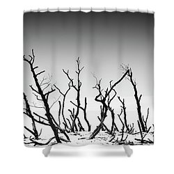 Shower Curtain featuring the photograph Sand Dune With Dead Trees by Chevy Fleet