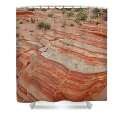 Shower Curtain featuring the photograph Sandstone Stripes In Valley Of Fire by Ray Mathis