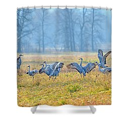 Saturday Night Shower Curtain