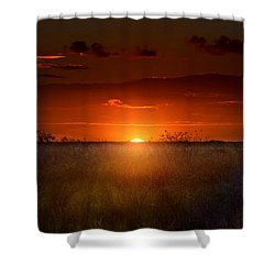 Sawgrass Sunset Shower Curtain by Mark Andrew Thomas