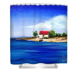 Sea Hill Boatshed - Original Sold Shower Curtain by Therese Alcorn
