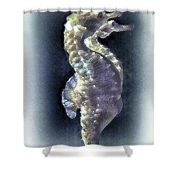 Sea Horses On Teal Shower Curtain