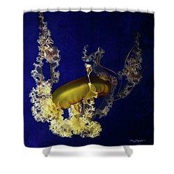 Sea Nettle Jellies Shower Curtain