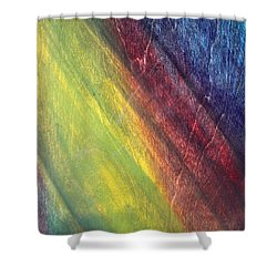 Against The Grain Shower Curtain