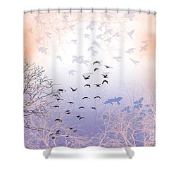 Seekers Shower Curtain