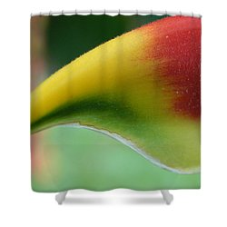 Sensual Shower Curtain by Beto Machado