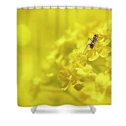 Set The Controls For The Heart Of The Sun Shower Curtain